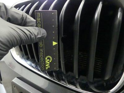 Bumper grille F R Crack